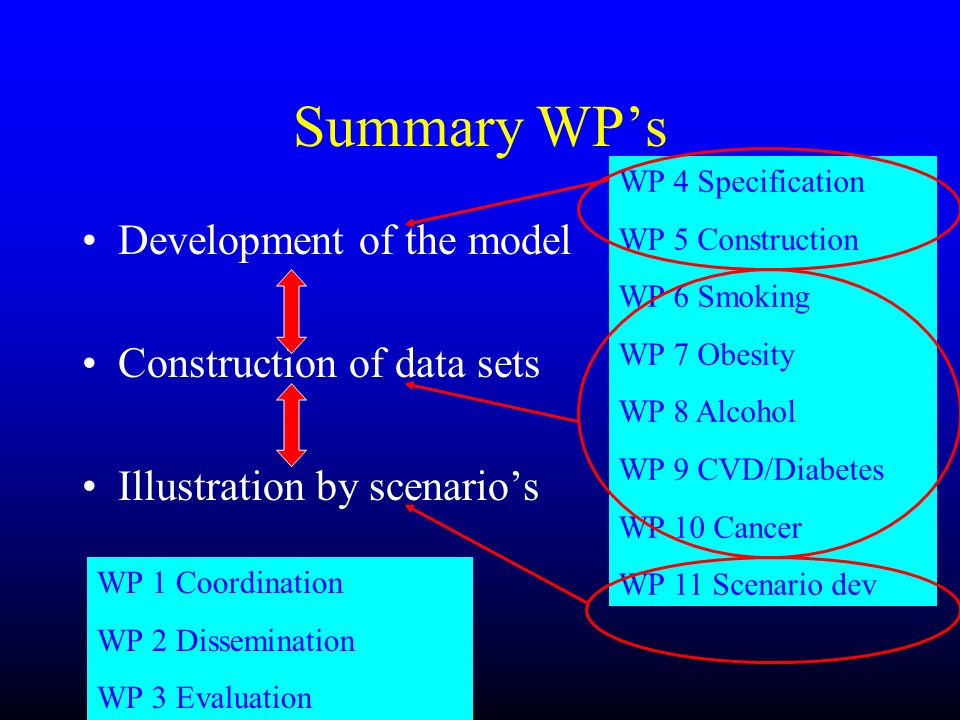 Summary WPs Development of the model Construction of data sets Illustration by scenarios WP 4 Specification WP 5 Construction WP 6 Smoking WP 7 Obesit