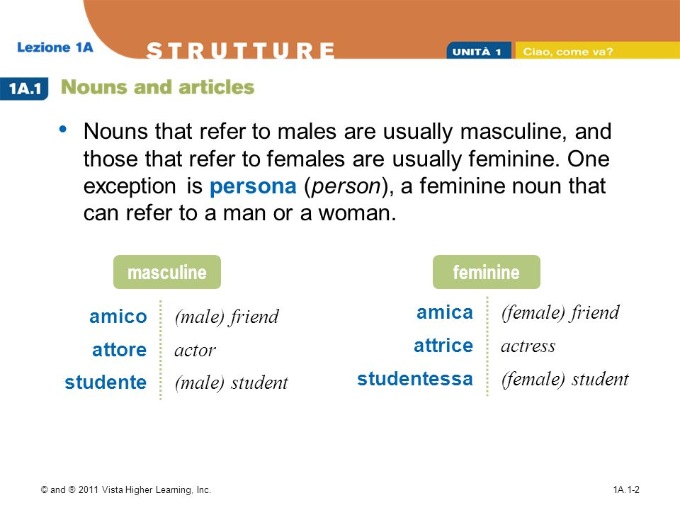 © and ® 2011 Vista Higher Learning, Inc.1A.1-2 Nouns that refer to males are usually masculine, and those that refer to females are usually feminine.