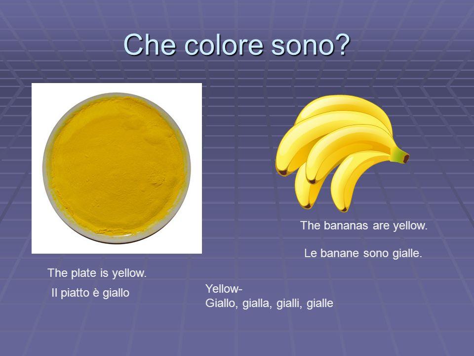 Che colore sono? The plate is yellow. Il piatto è giallo The bananas are yellow. Le banane sono gialle. Yellow- Giallo, gialla, gialli, gialle