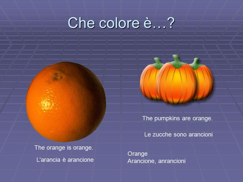 Che colore è…? The orange is orange. Larancia è arancione The pumpkins are orange. Le zucche sono arancioni Orange Arancione, anrancioni