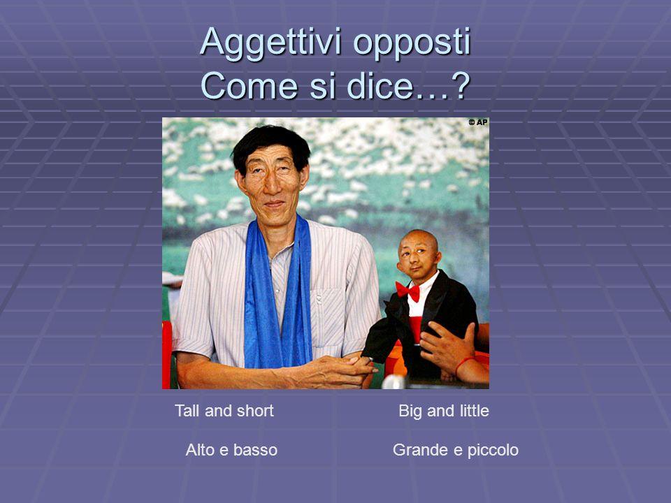Aggettivi opposti Come si dice…? Tall and short Alto e basso Big and little Grande e piccolo