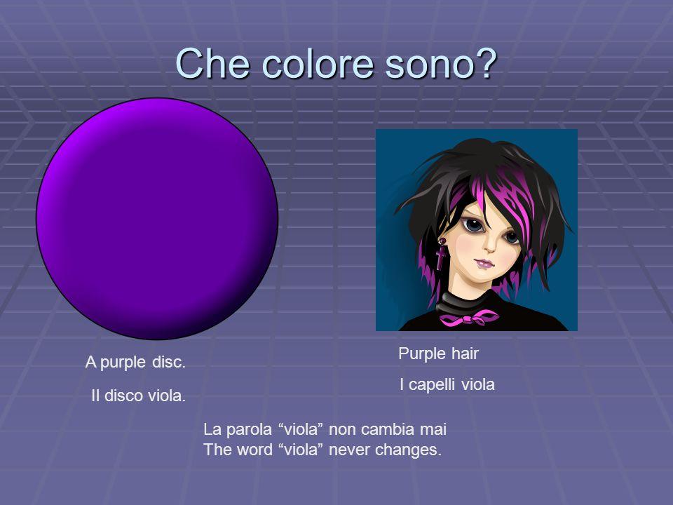 Che colore sono? A purple disc. Il disco viola. Purple hair I capelli viola La parola viola non cambia mai The word viola never changes.