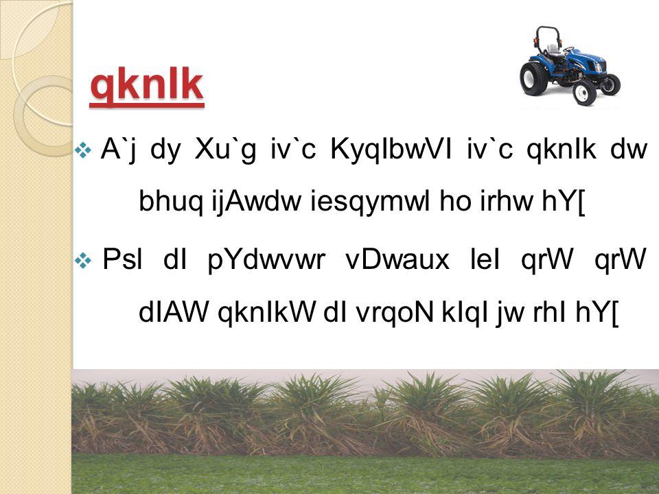 KwdW Aqy KyqIbwVI
