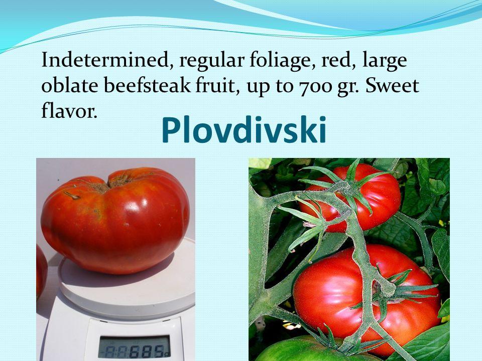 Plovdivski Indetermined, regular foliage, red, large oblate beefsteak fruit, up to 700 gr. Sweet flavor.