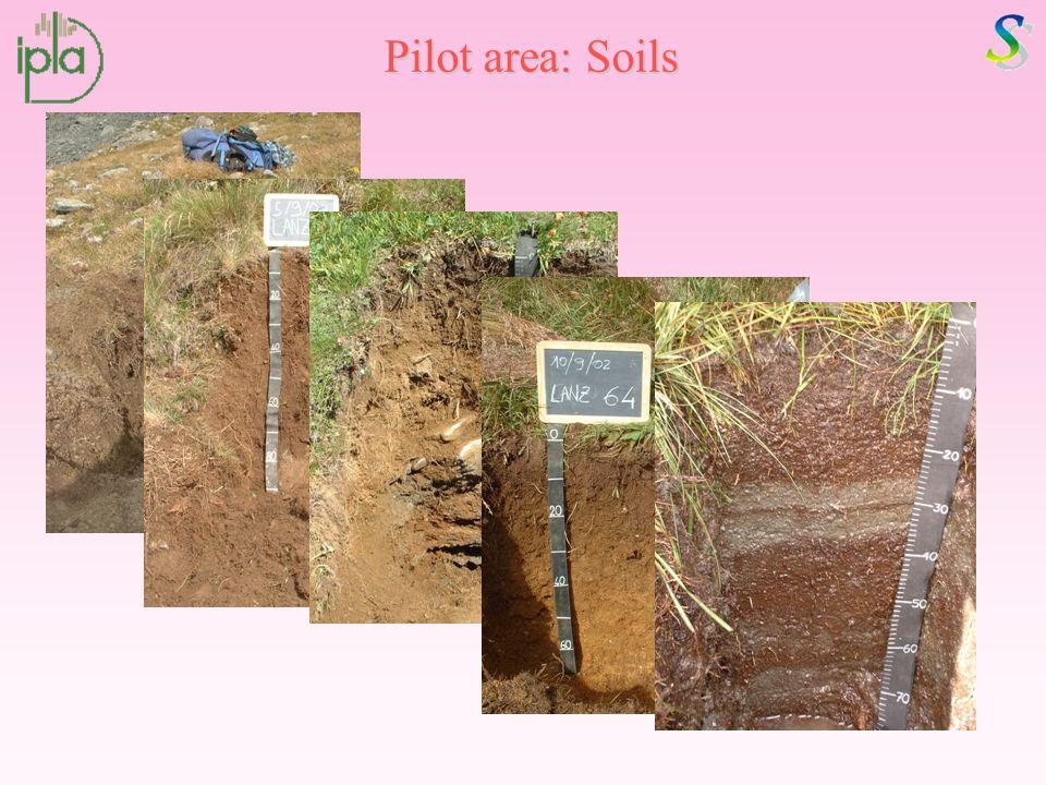 Pilot area: Soils
