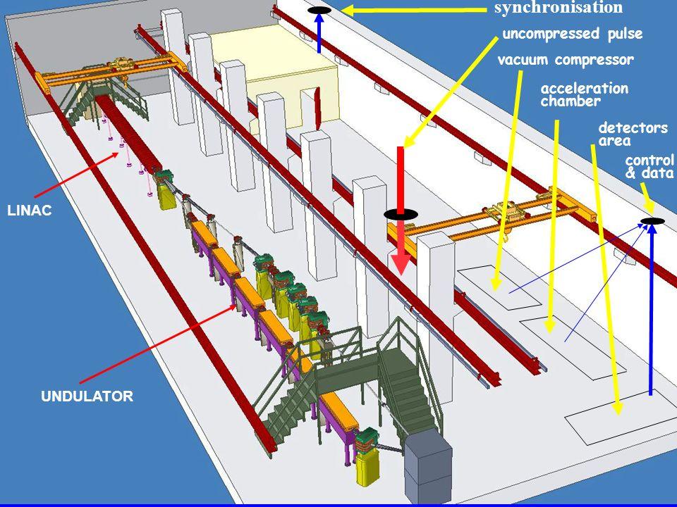 LINAC UNDULATOR synchronisation uncompressed pulse vacuum compressor acceleration chamber detectors area control & data