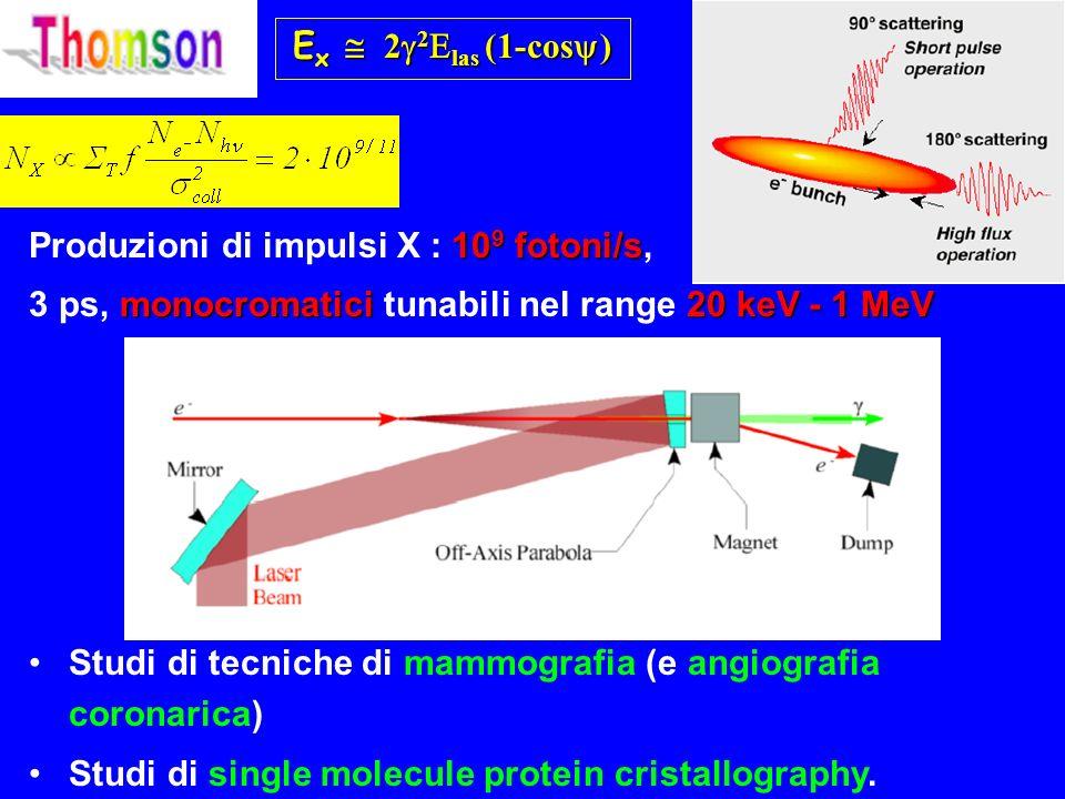 E x 2 2 las (1-cos ) 10 9 fotoni/s Produzioni di impulsi X : 10 9 fotoni/s, monocromatici 20 keV - 1 MeV 3 ps, monocromatici tunabili nel range 20 keV - 1 MeV Studi di tecniche di mammografia (e angiografia coronarica) Studi di single molecule protein cristallography.