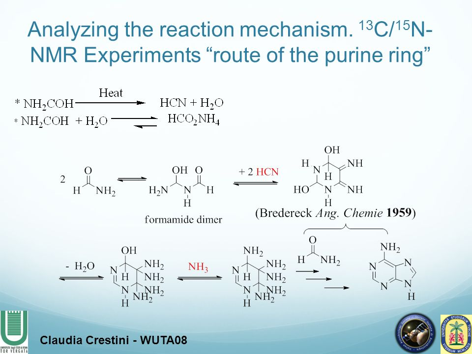 Analyzing the reaction mechanism. 13 C/ 15 N- NMR Experiments route of the purine ring Claudia Crestini - WUTA08