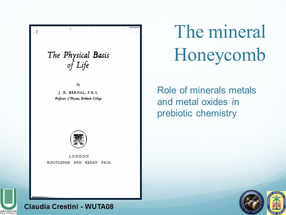 The mineral Honeycomb Role of minerals metals and metal oxides in prebiotic chemistry
