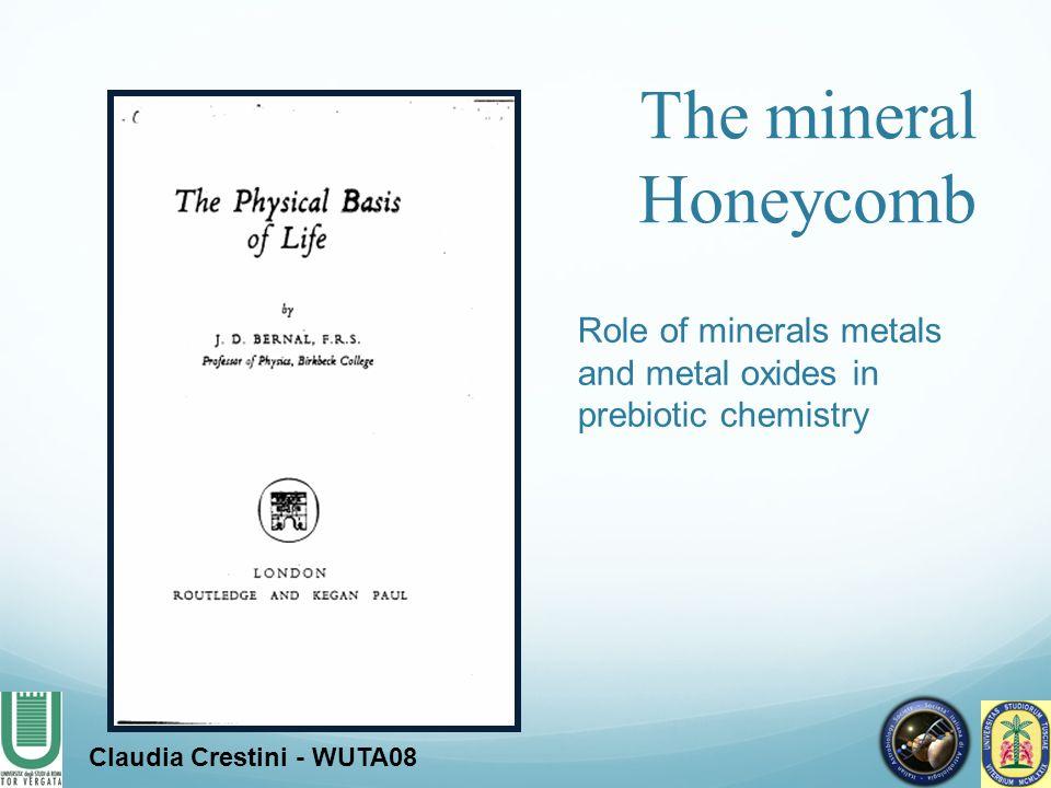 Claudia Crestini - WUTA08 The role of minerals and metal oxides on prebiotic processes.