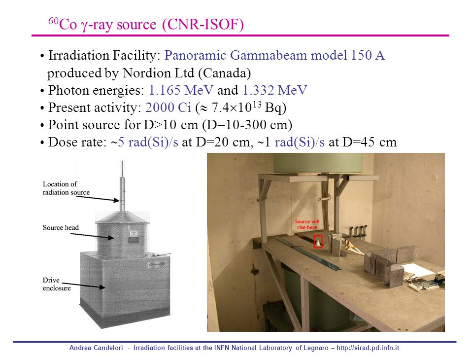 Andrea Candelori - Irradiation facilities at the INFN National Laboratory of Legnaro – http://sirad.pd.infn.it 60 Co -ray source (CNR-ISOF) Irradiatio