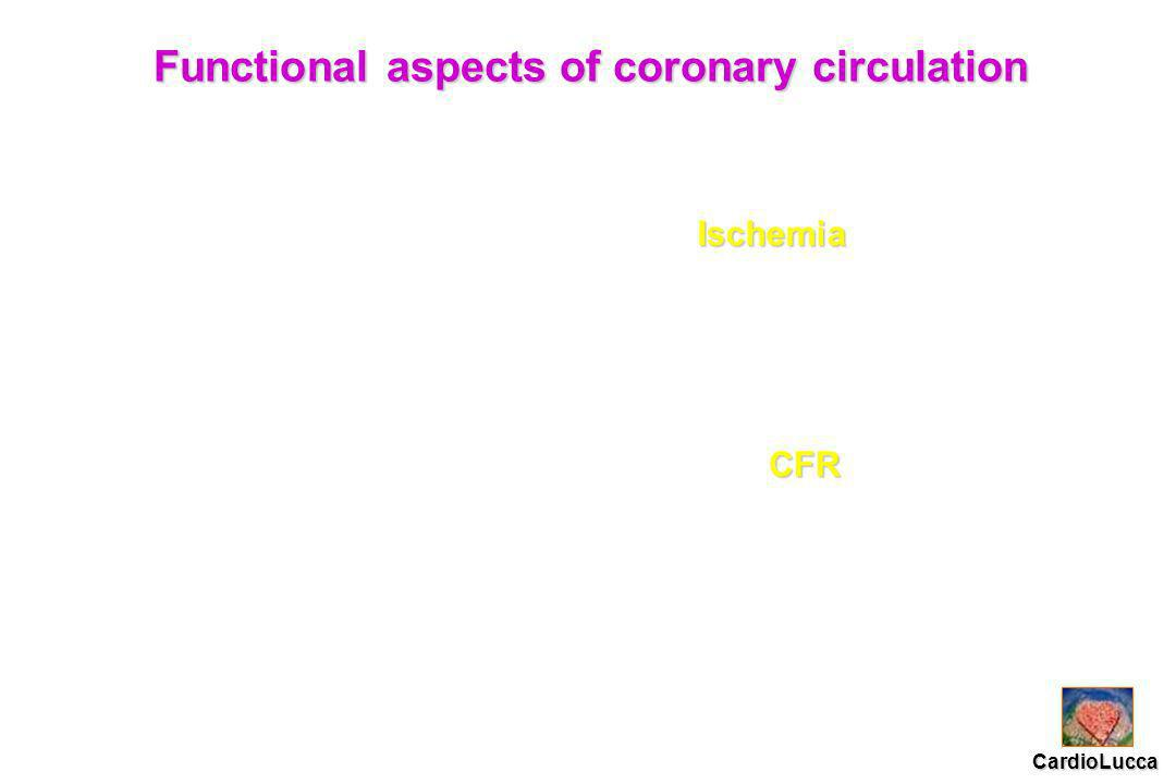 Functional aspects of coronary circulation Ischemia CFR CardioLucca