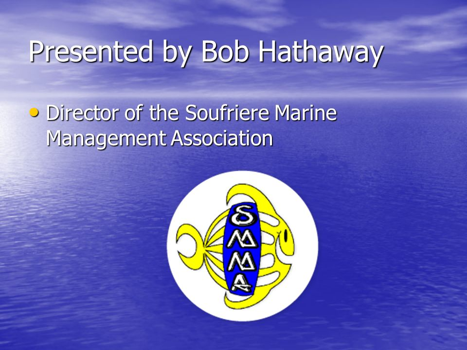 Presented by Bob Hathaway Vice- President of the Caribbean Marine Association Vice- President of the Caribbean Marine Association