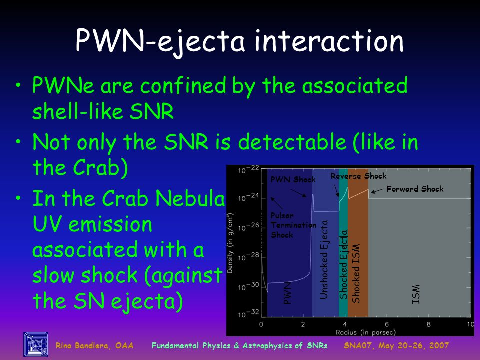 Rino Bandiera, OAAFundamental Physics & Astrophysics of SNRsSNA07, May 20-26, 2007 ISM Shocked ISM Shocked EjectaUnshocked Ejecta PWN Pulsar Wind Forw