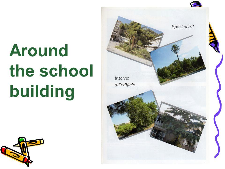 Around the school building