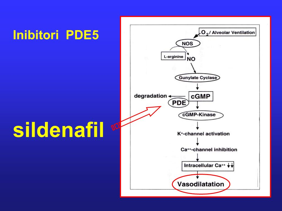 sildenafil Inibitori PDE5