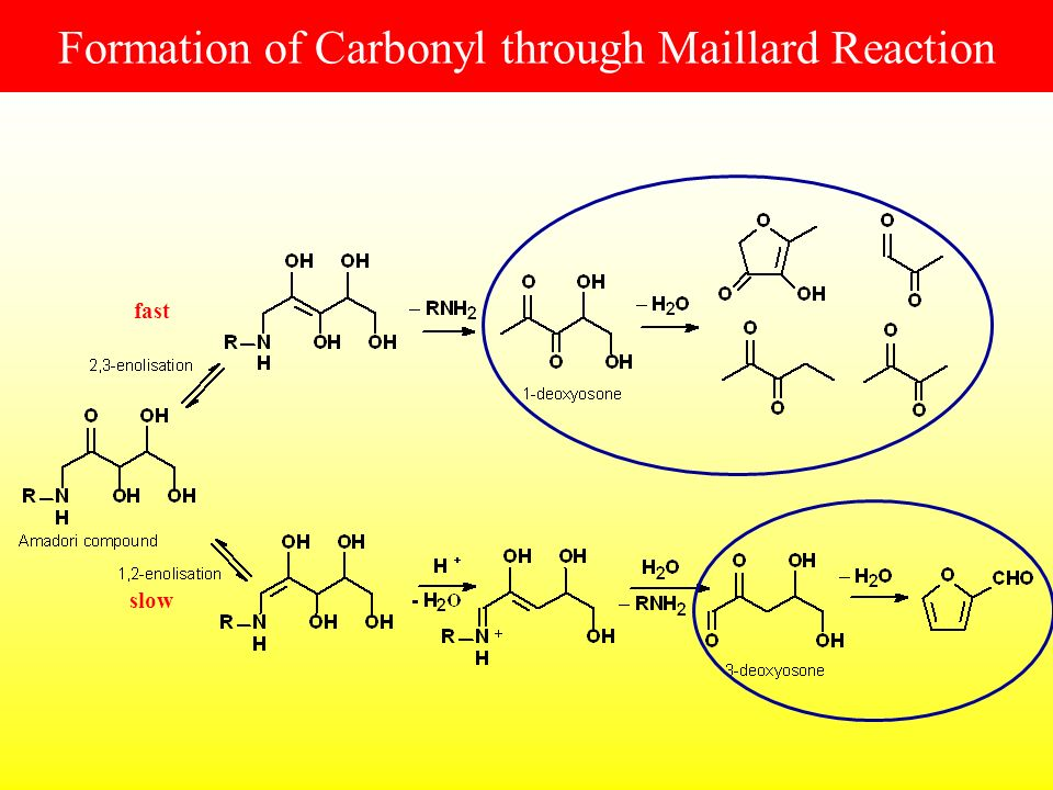 Formation of Carbonyl through Maillard Reaction slow fast