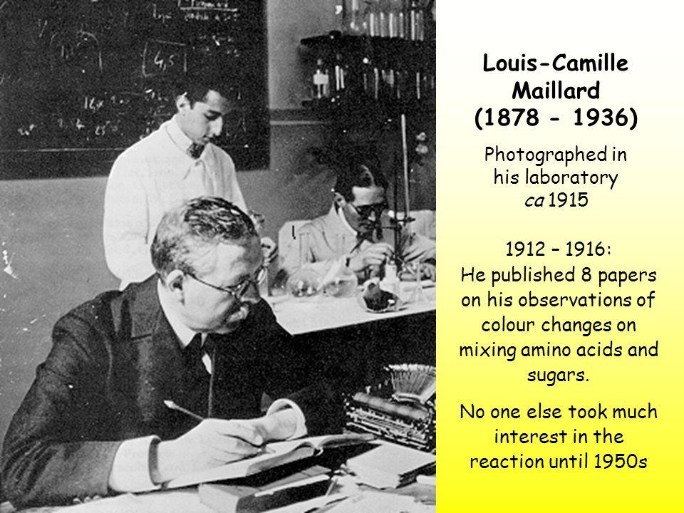 Maillard- Hodge Reaction.