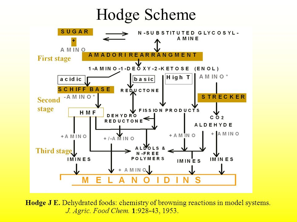 Hodge Scheme Hodge J E. Dehydrated foods: chemistry of browning reactions in model systems. J. Agric. Food Chem. 1:928-43, 1953.