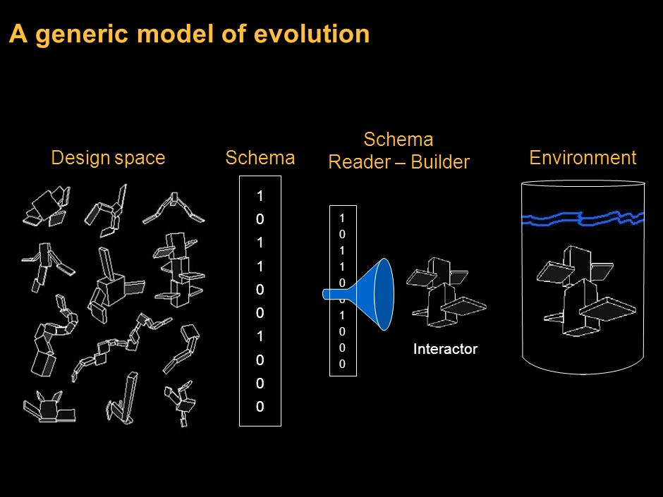 12 Evolution is a search algorithm for fit designs Repeat Create a variety of experiments Variation Select designs that are fit Selection Amplify fit