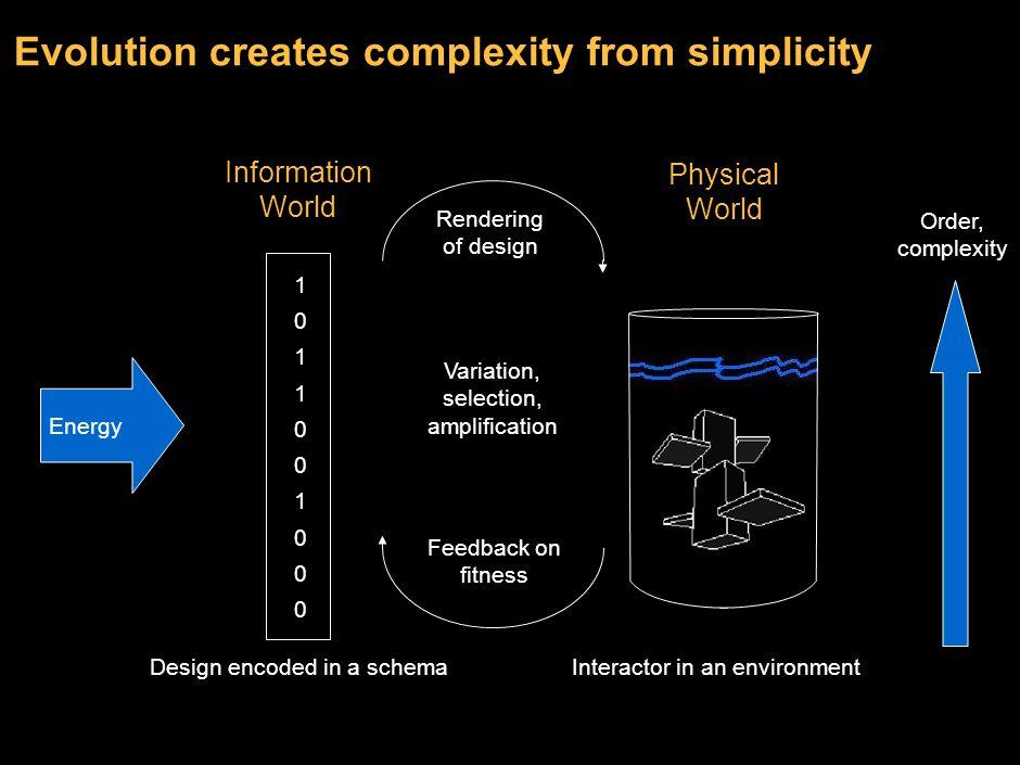 13 A generic model of evolution Design spaceSchema 10110010001011001000 Environment Schema Reader – Builder 10110010001011001000 Interactor