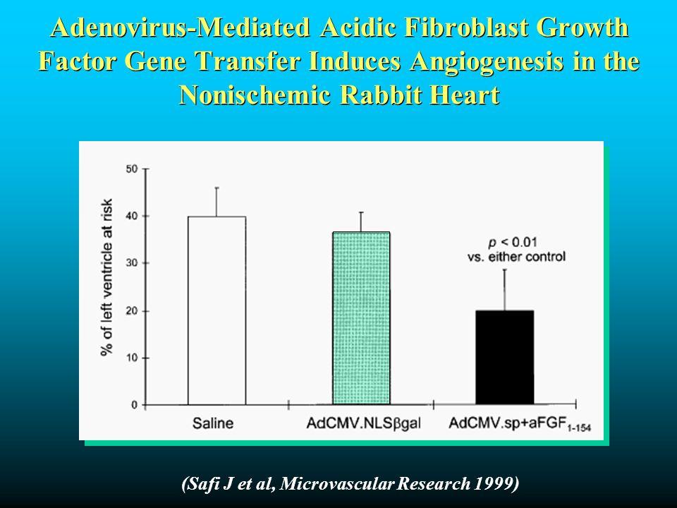 (Safi J et al, Microvascular Research 1999) Adenovirus-Mediated Acidic Fibroblast Growth Factor Gene Transfer Induces Angiogenesis in the Nonischemic