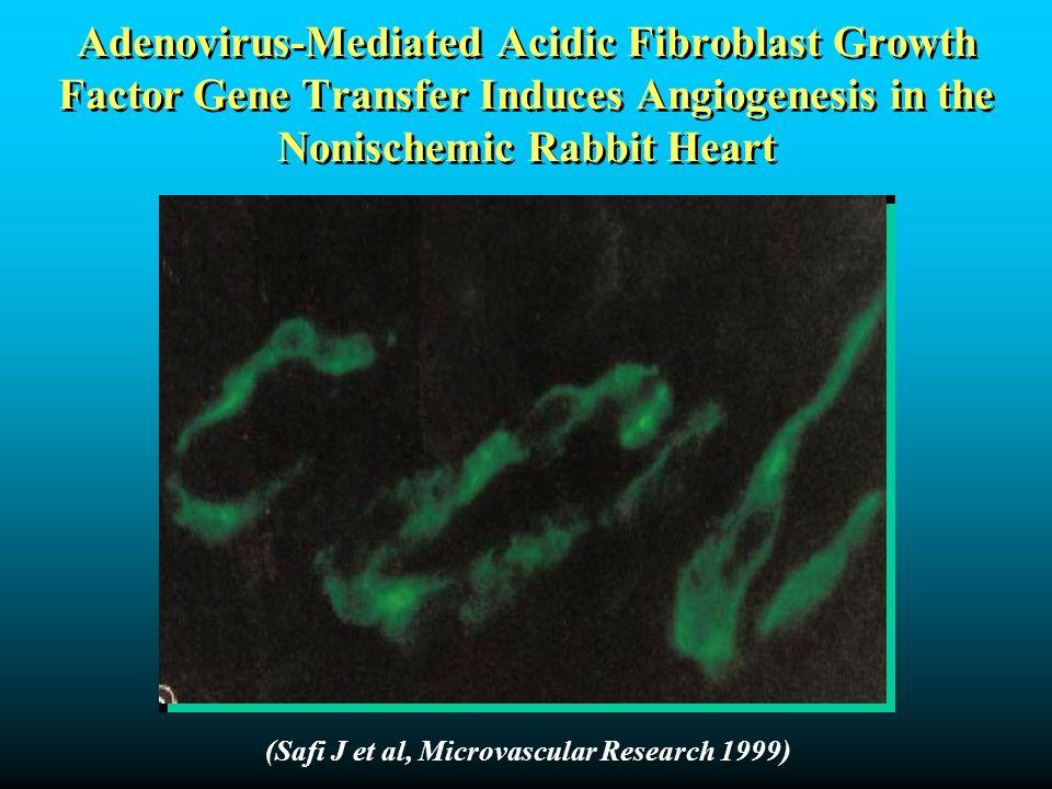 Adenovirus-Mediated Acidic Fibroblast Growth Factor Gene Transfer Induces Angiogenesis in the Nonischemic Rabbit Heart