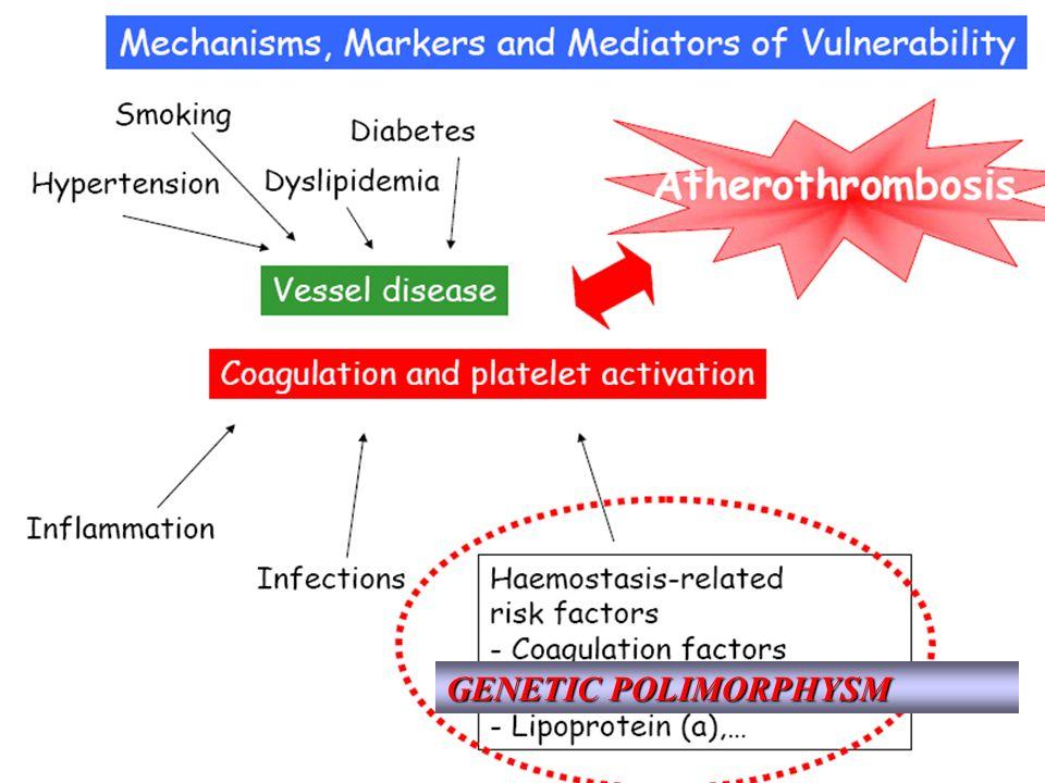 GENETIC POLIMORPHYSM