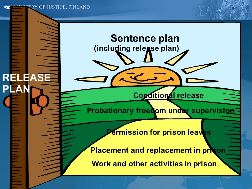 Sentence plan (including release plan) Conditional release Probationary freedom under supervision Permission for prison leaves Placement and replaceme