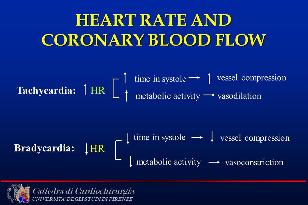 Cattedra di Cardiochirurgia UNIVERSITA DEGLI STUDI DI FIRENZE HEART RATE AND CORONARY BLOOD FLOW Tachycardia: HR time in systole metabolic activity ve