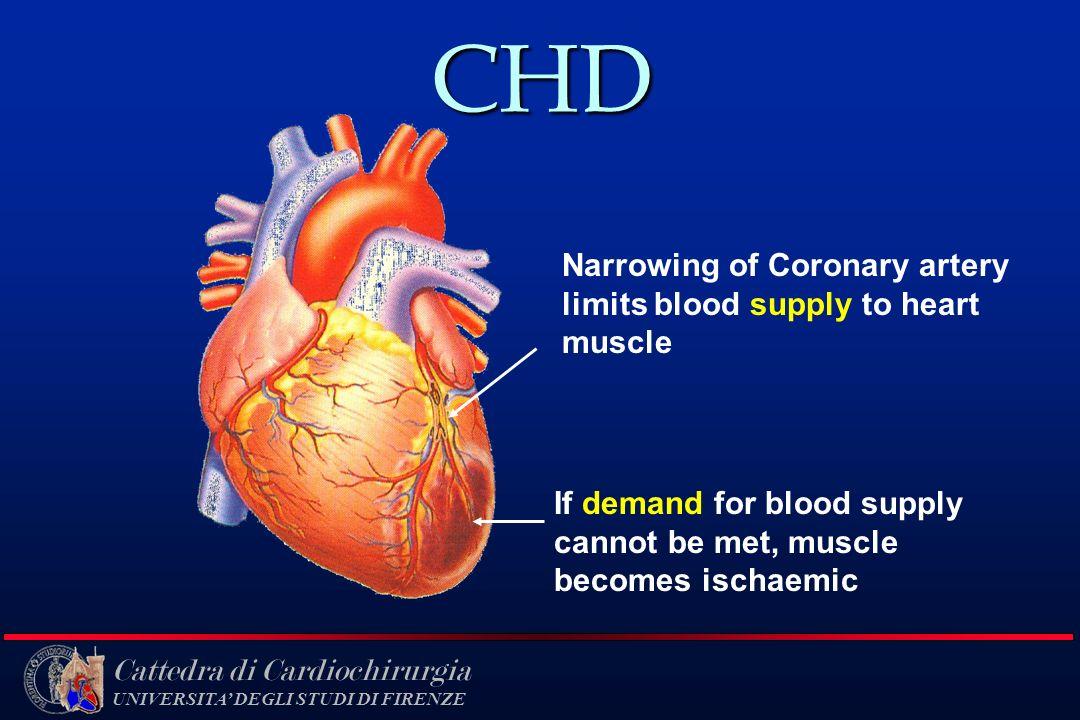 Cattedra di Cardiochirurgia UNIVERSITA DEGLI STUDI DI FIRENZE CHD Narrowing of Coronary artery limits blood supply to heart muscle If demand for blood