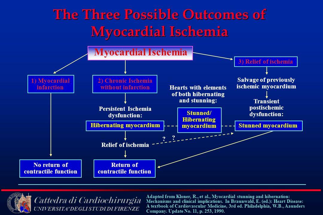 Cattedra di Cardiochirurgia UNIVERSITA DEGLI STUDI DI FIRENZE The Three Possible Outcomes of Myocardial Ischemia 1) Myocardial infarction 3) Relief of