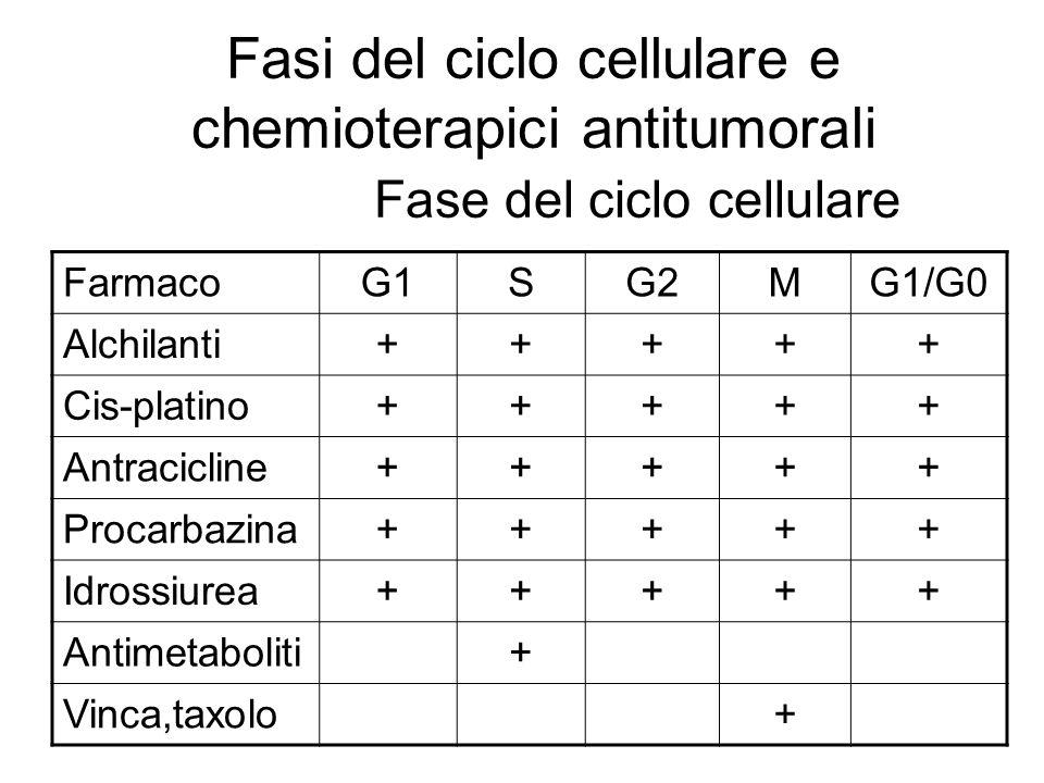Fasi del ciclo cellulare e chemioterapici antitumorali Fase del ciclo cellulare FarmacoG1SG2MG1/G0 Alchilanti+++++ Cis-platino+++++ Antracicline+++++