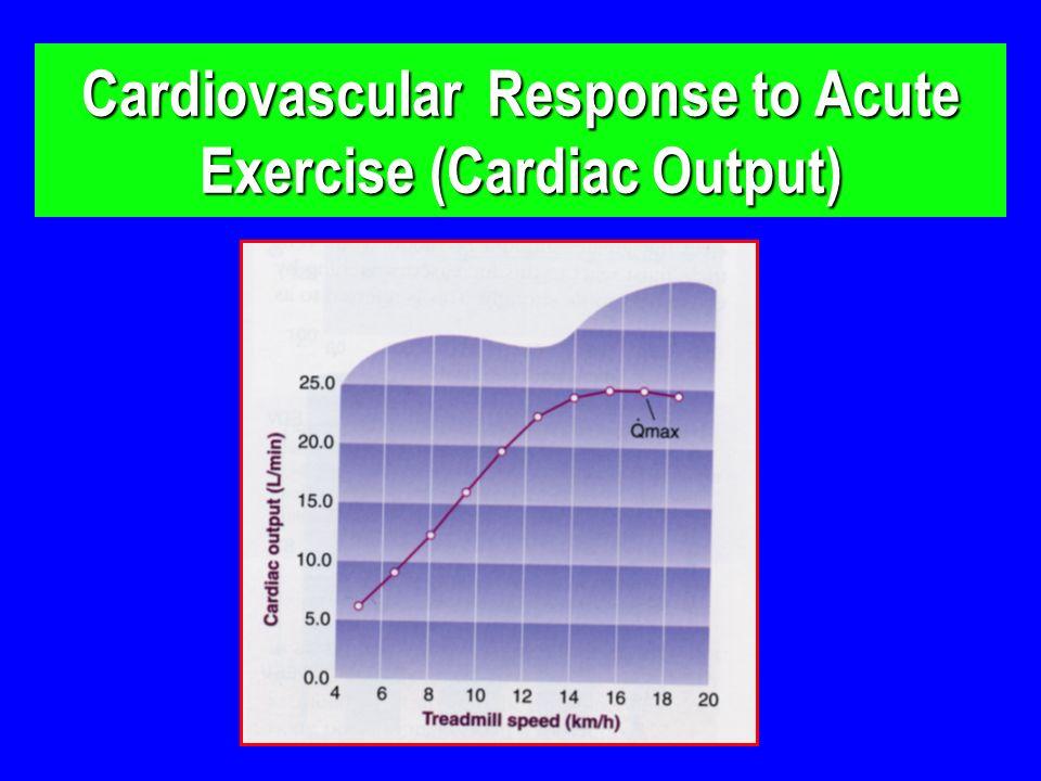 Cardiovascular Response to Acute Exercise (Cardiac Output)