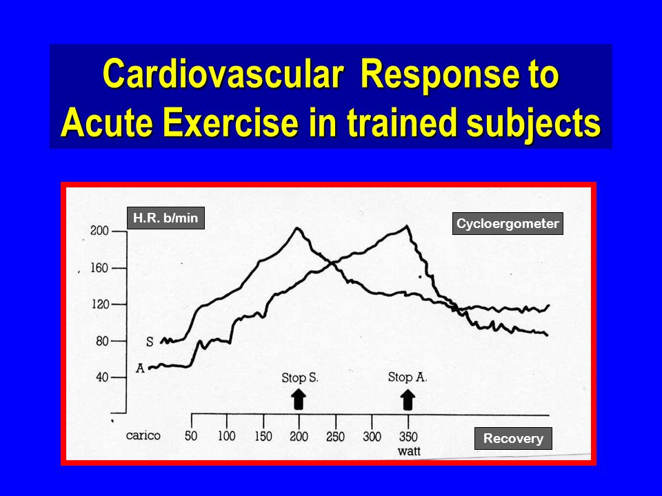 H.R. b/min Recovery Cycloergometer Cardiovascular Response to Acute Exercise in trained subjects