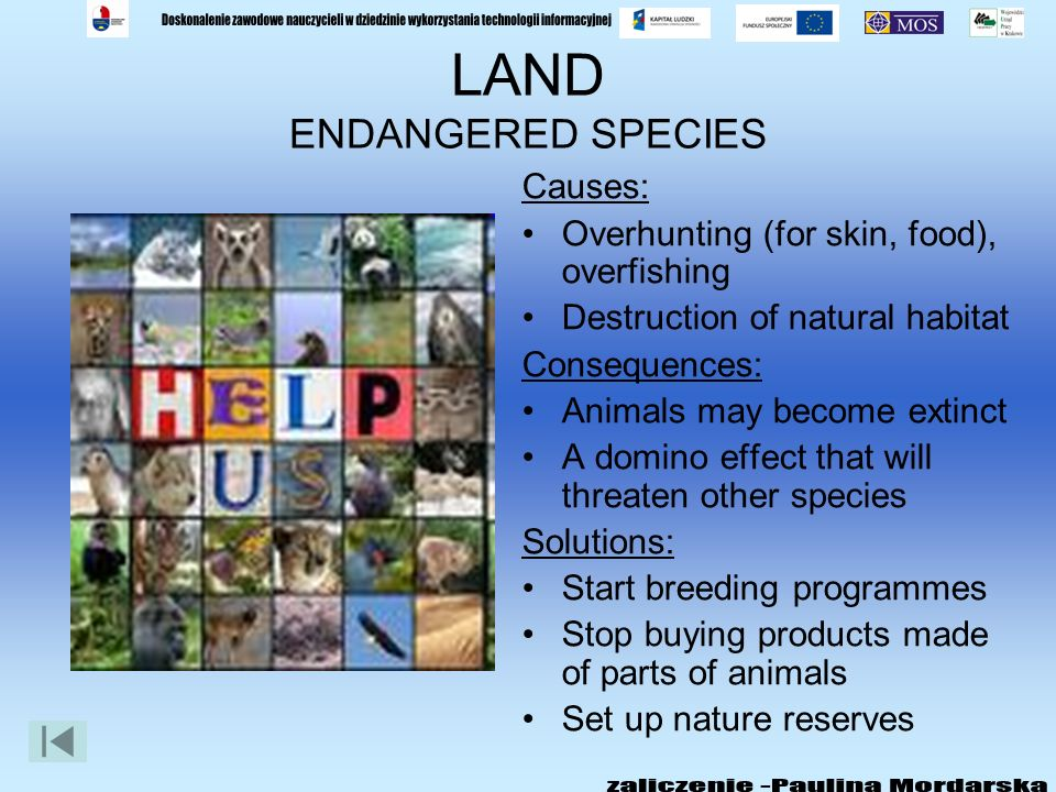 LAND: DEFORESTATION Causes: Acid rain Cutting down or burning forests Consequences: Animals and plants lose their homes Animals may become extinct Les