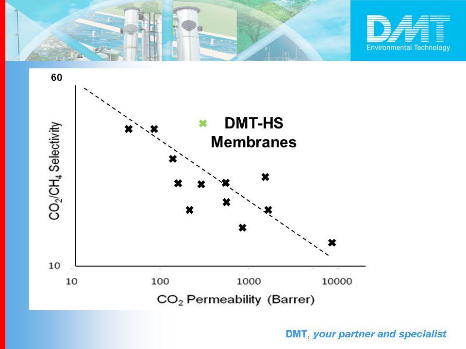DMT-HS Membranes 60