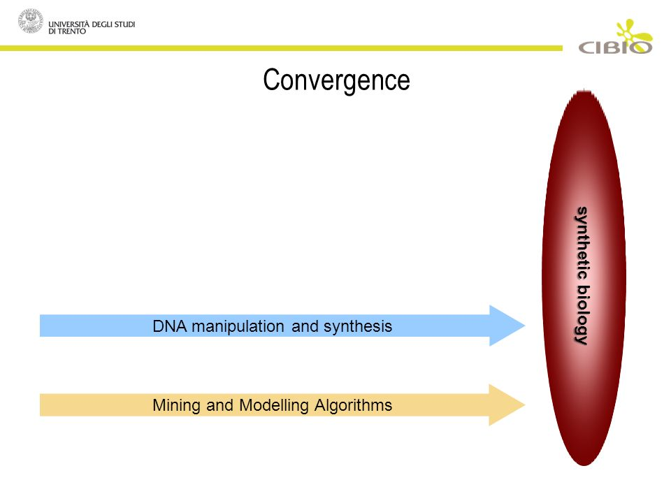 Convergence DNA manipulation and synthesis Mining and Modelling Algorithms synthetic biology
