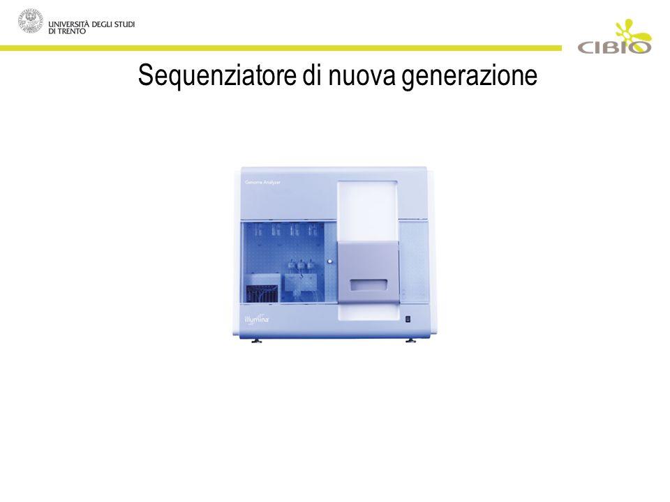 Sequenziatore di nuova generazione