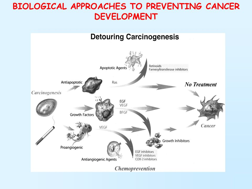 BIOLOGICAL APPROACHES TO PREVENTING CANCER DEVELOPMENT