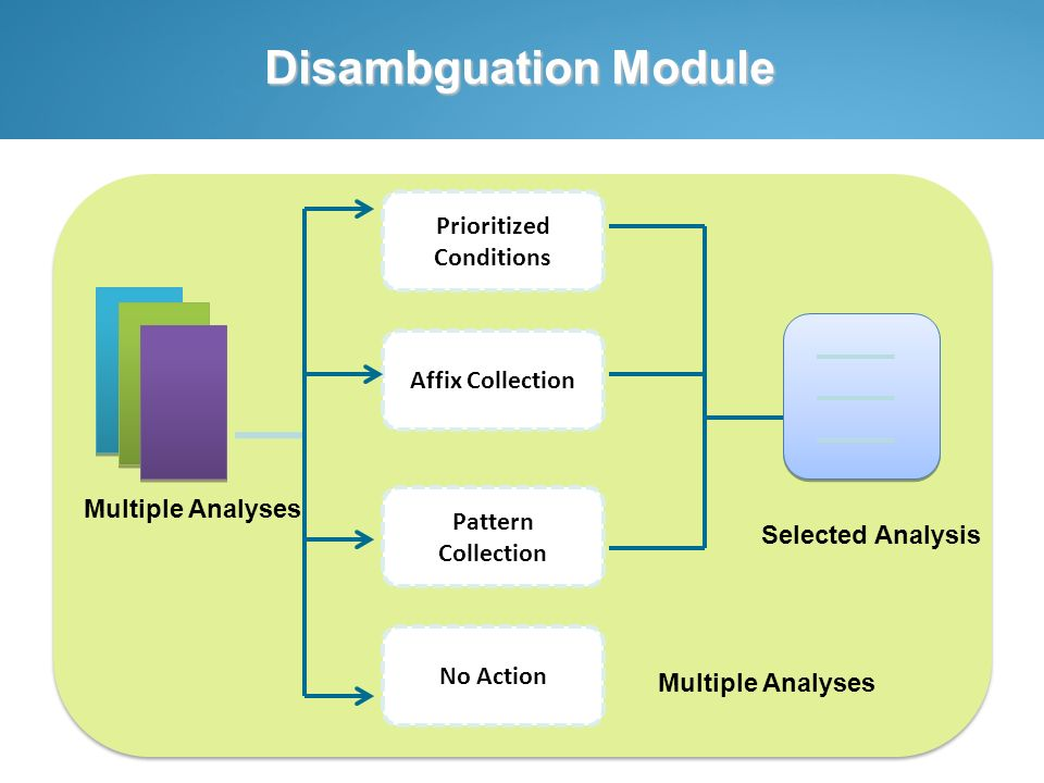 Disambguation Module Affix Collection Prioritized Conditions Pattern Collection No Action Multiple Analyses Selected Analysis