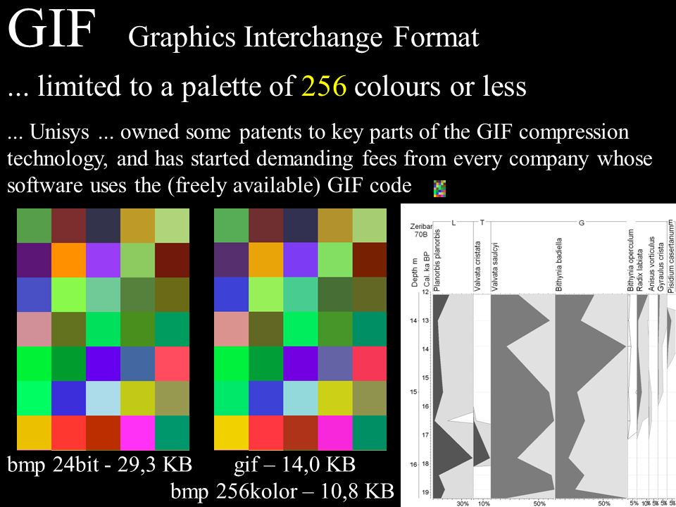 GIF Graphics Interchange Format... limited to a palette of 256 colours or less...