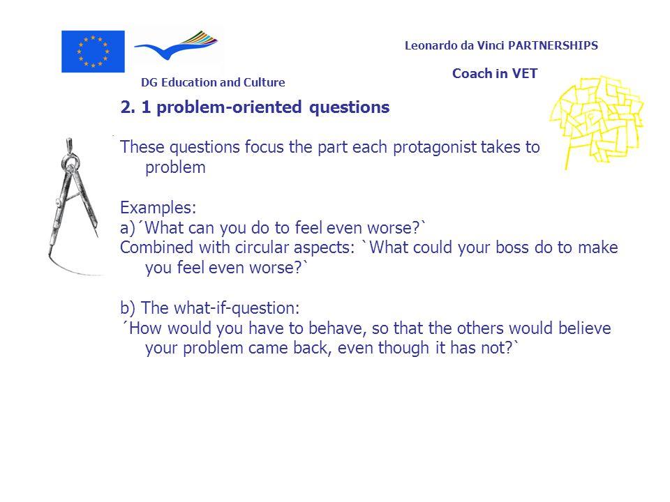 DG Education and Culture Leonardo da Vinci PARTNERSHIPS Coach in VET 2. 1 problem-oriented questions These questions focus the part each protagonist t