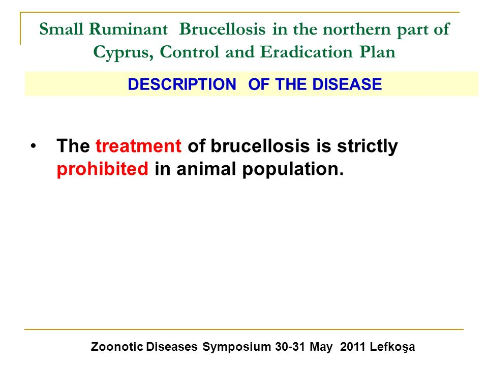 Small Ruminant Brucellosis in the northern part of Cyprus, Control and Eradication Plan The treatment of brucellosis is strictly prohibited in animal