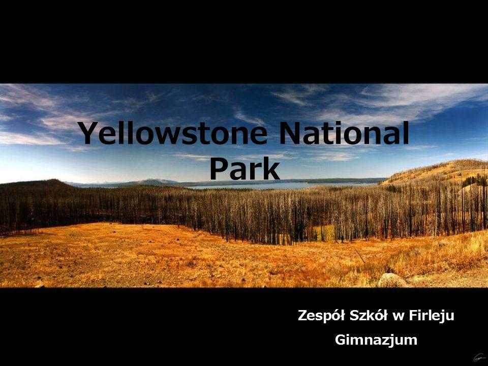 Yellowstone National Park Zespół Szkół w Firleju Gimnazjum