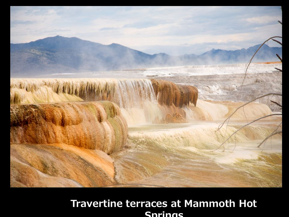 Travertine terraces at Mammoth Hot Springs