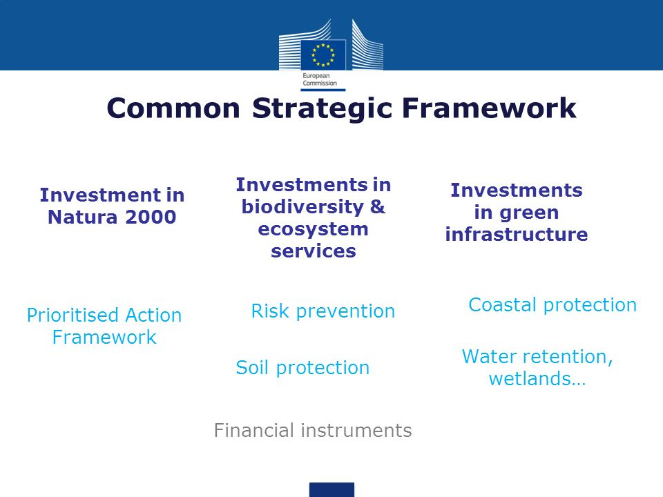 Common Strategic Framework Investments in biodiversity & ecosystem services Soil protection Prioritised Action Framework Investments in green infrastr