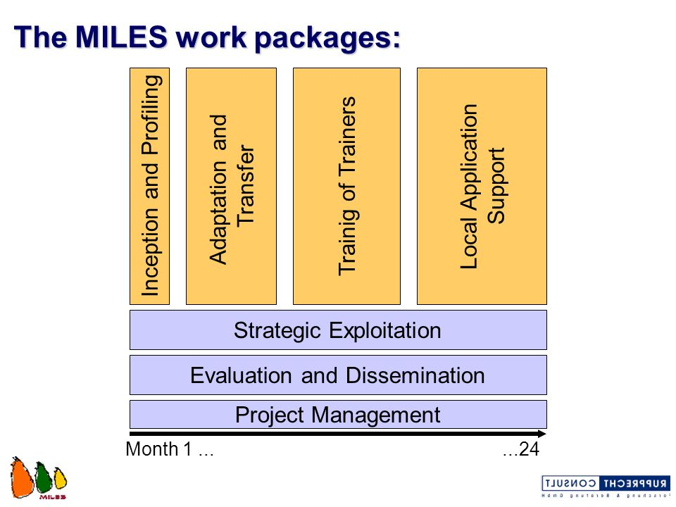 The MILES work packages: Strategic Exploitation Project Management Inception and Profiling Adaptation and Transfer Trainig of Trainers Local Applicati