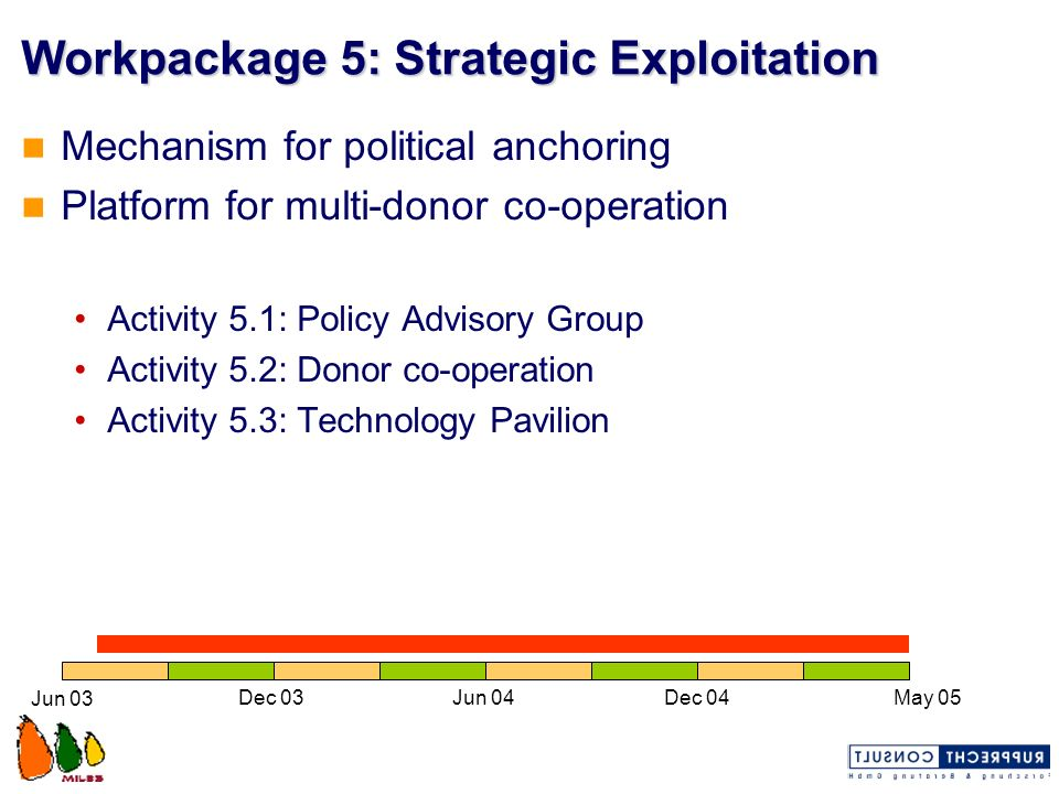 Workpackage 5: Strategic Exploitation Mechanism for political anchoring Platform for multi-donor co-operation Activity 5.1: Policy Advisory Group Acti