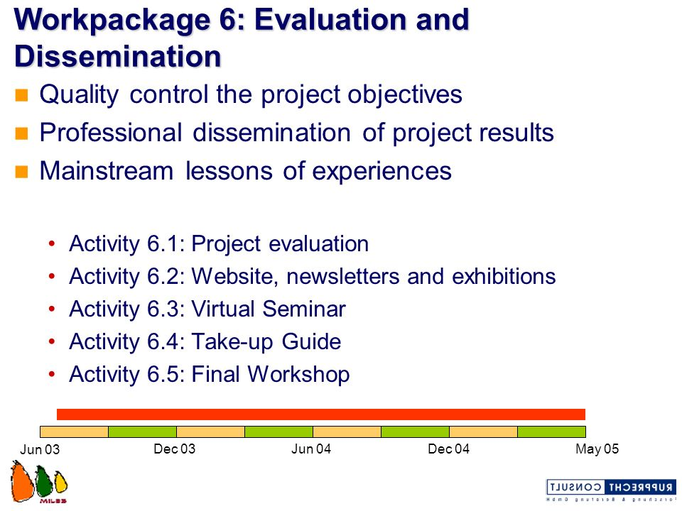 Workpackage 6: Evaluation and Dissemination Quality control the project objectives Professional dissemination of project results Mainstream lessons of